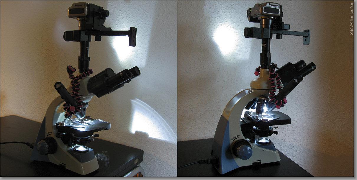 Makrofotos mit mikroskop aufnehmen